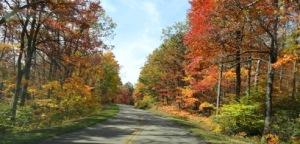 fall-foliage-east-texas-01