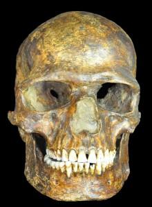 KostenkiSkeleton-2-220x300
